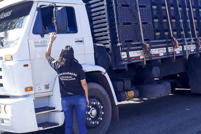 Fiscais abordaram centenas de veículos nas rodovias