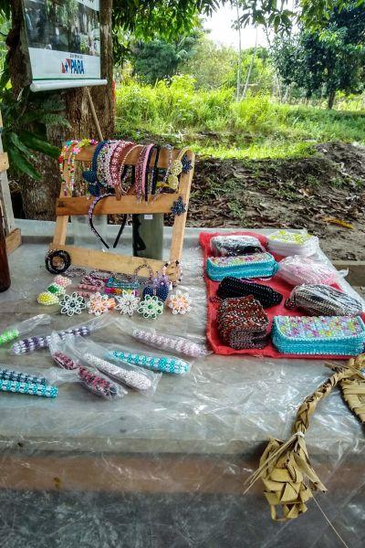 O artesanato ajuda a melhorar a renda dos agricultores
